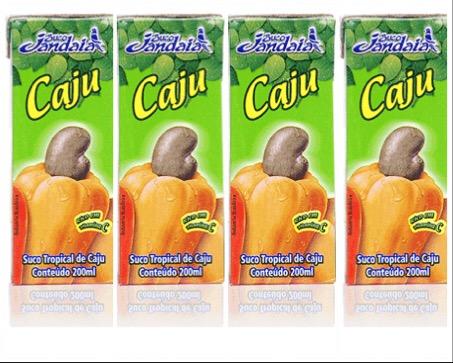 Suco pronto de cajú Jandaia 200ml  (pacote c/ 4 unid.)