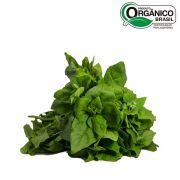 Espinafre orgânico 200g