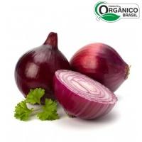 Cebola roxa orgânica 600g