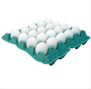 Ovos brancos  30x1